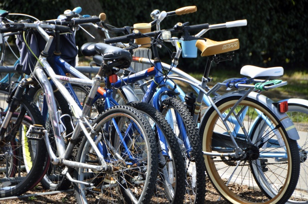PPBHS Deals With Bike Theft