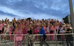 The pit puts their paws up!